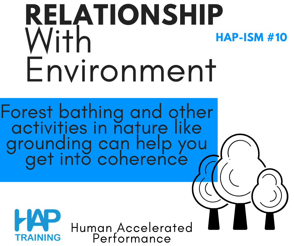3 Relationships For Better Social-Emotional Intelligence: Relationship with Environment